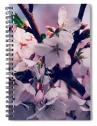 Carry Me Spiral Notebook