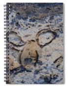 Carved Catface Spiral Notebook