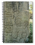 Carved Danzantes Stone Spiral Notebook