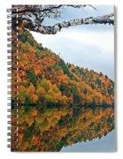 Cascade Birch Spiral Notebook