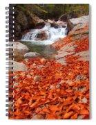 Cascade Brook Spiral Notebook