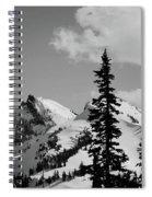 Cascades 1 Spiral Notebook