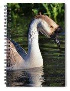 Cascading Elegance Spiral Notebook
