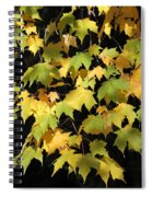 Cascading Leaves Spiral Notebook