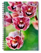 Cascading Miniature Orchids Spiral Notebook