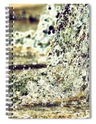 10196 Cascading Water 01b Spiral Notebook