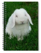 Casper Spiral Notebook