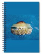 Cassiopeia Jellyfish Abstract Spiral Notebook