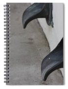 Cast Iron Rain Spouts In Stucco Building Photograph By Colleen Spiral Notebook