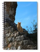 Castle Cat Spiral Notebook