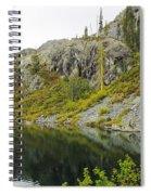 Castle Lake  Spiral Notebook