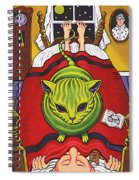 Cat - Alien Abduction Spiral Notebook
