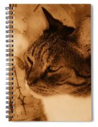 Cat And Clock Spiral Notebook