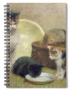 Cat And Kittens Spiral Notebook