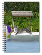 Cat At The Beach Spiral Notebook