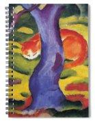 Cat Behind A Tree Spiral Notebook