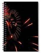 Cat Burst Spiral Notebook
