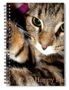 Cat Card Spiral Notebook