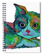Cat For Love Spiral Notebook