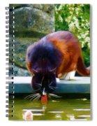 Cat Drinking In Picturesque Garden Spiral Notebook
