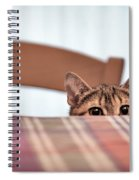 Cat Hiding Under The Table Spiral Notebook