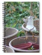 Cat In Flowerpot Spiral Notebook