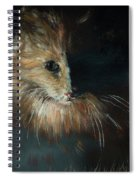 Cat In The Shade Spiral Notebook