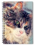 Cat Jasper Spiral Notebook