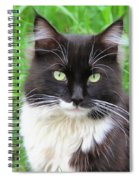 Cat Lawrence Spiral Notebook