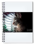 Cat Looking Out Window Spiral Notebook