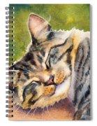 Cat Nap Spiral Notebook