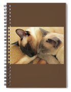 Cat Nap With Toby And Sadi Spiral Notebook