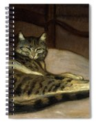 Cat On A Chair Spiral Notebook