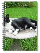 Cat Relaxing In A Birdbath In The Summertime  Spiral Notebook