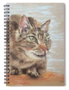 Cat Sitting On Lookout Spiral Notebook