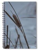 Cat Tail Spiral Notebook