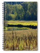 Cat Tails In The Sun Spiral Notebook