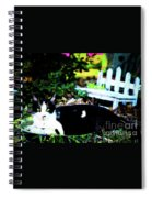 Cat Tale Spiral Notebook