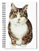 Cat Watercolor Illustration Spiral Notebook