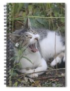 Cat Yawning In The Garden Spiral Notebook