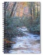 Cataloochee Creek Spiral Notebook
