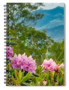 Catawba Rhododendron At The Craggy Spiral Notebook