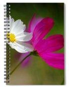 Catching Light Spiral Notebook