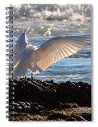 Catching Rays At The Beach Spiral Notebook