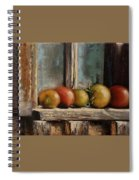 Catching Summer Rays Spiral Notebook