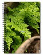 Catching The Fallen Spiral Notebook