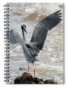 Catching The River Breeze Spiral Notebook