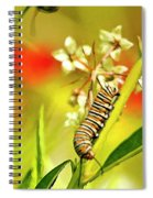 Caterpillar Stage 2 Spiral Notebook
