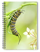 Caterpiller On Plant Spiral Notebook