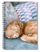 Catnap Spiral Notebook